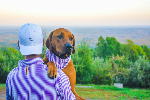 The Brand is Inspired By the Rhodesian Ridgeback